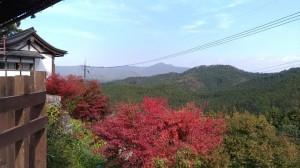金峯山寺 山
